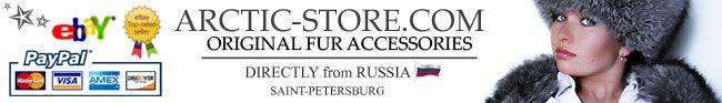 Arctic-Store.com